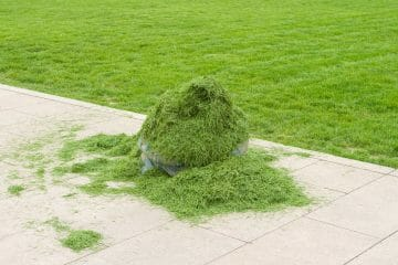 should i bag my grass clippings if have weeds