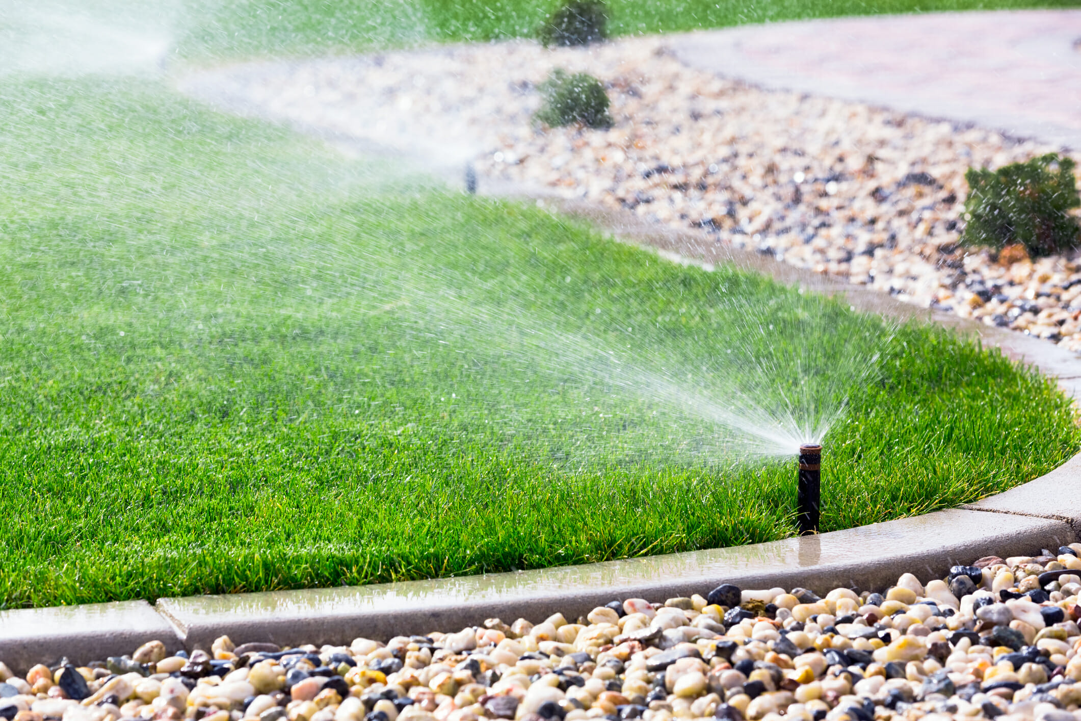watering your lawn after applying fungicide