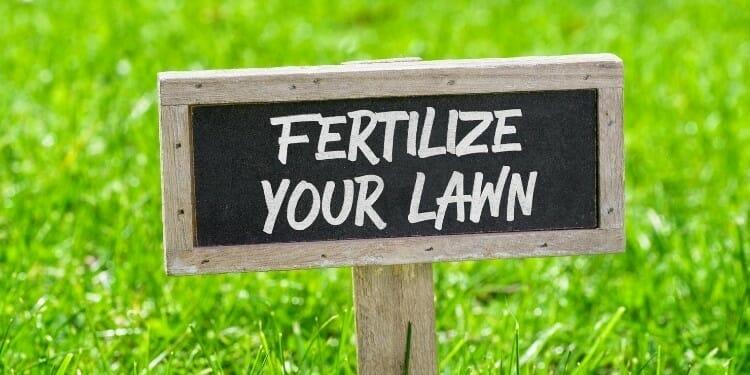 how long should fertilizer be down before it rains