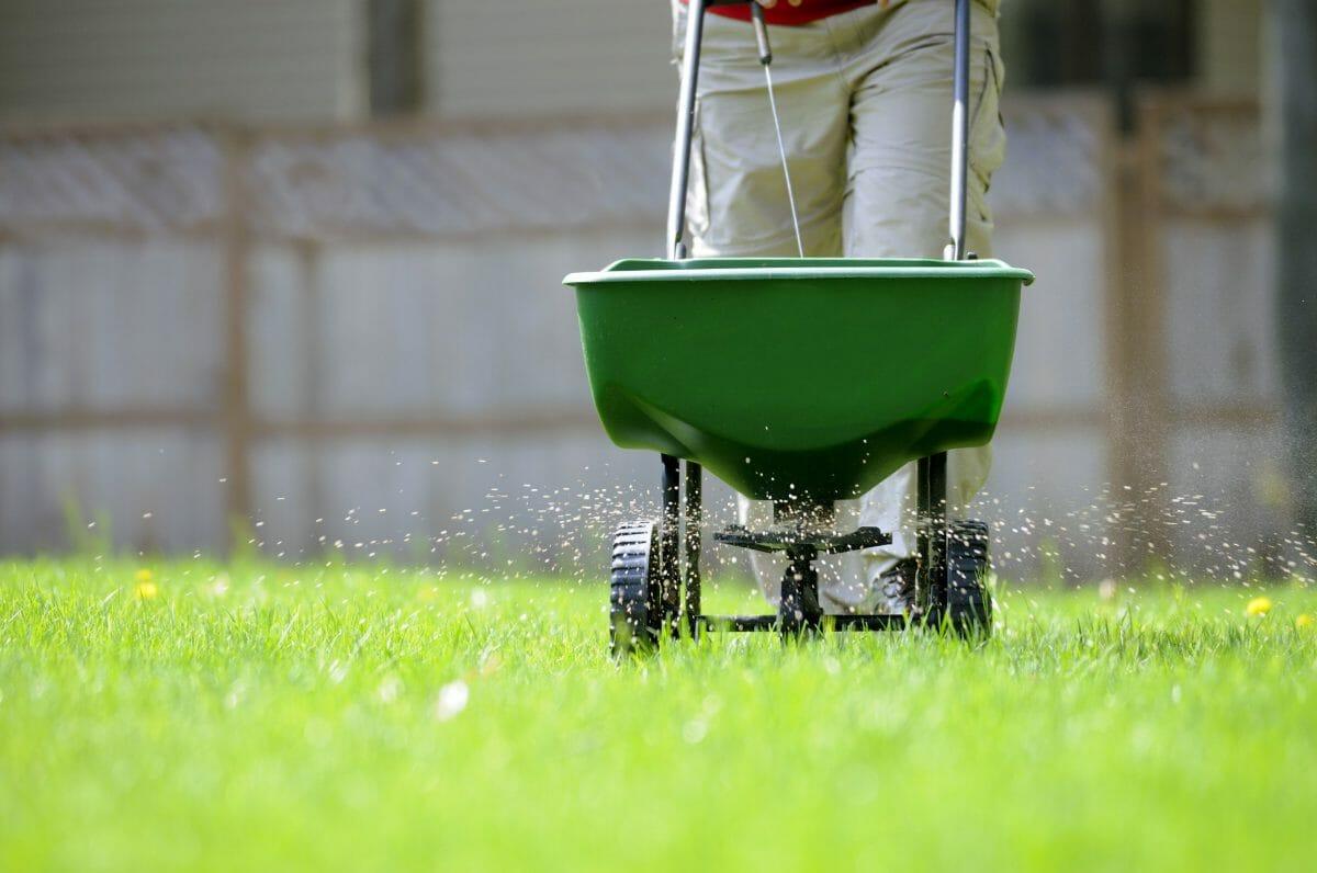 how often should you apply starter fertilizer
