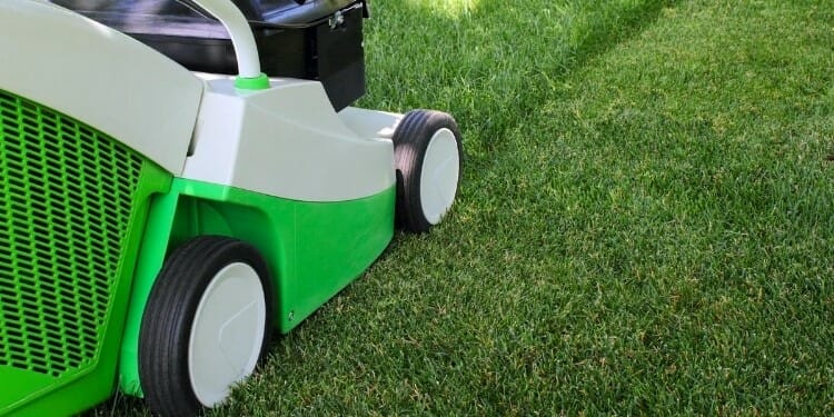 is there a law on mowing your lawn