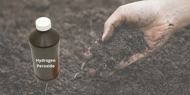 how to sterilize soil with hyrdogen peroxide