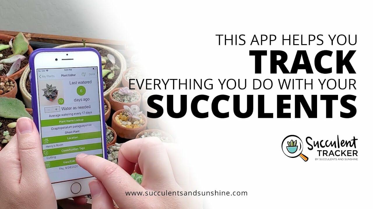 succulent tracker